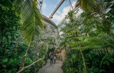 Visitors explore Chester Zoo which has been named England's top visitor attraction outside of London in a new report (8)