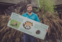 Chester Zoo is auctioning off 500 pieces of zoo history on eBay. Dave White zookeeper and star of The Secret Life of the Zoo, shows off a sign about red pandas (2)