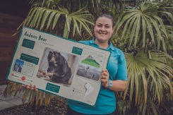 Chester Zoo is auctioning off 500 pieces of zoo history on eBay. Lucy Edwards, carnivore keeper and star of The Secret Life of the Zoo, shows off an Andean bear sign (2)