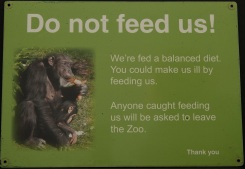 Do not feed the chimps sign