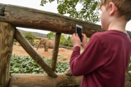 Chester Zoo education team welcome record numbers (4)
